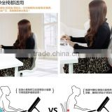 Lumbar Support air Back Support Office Chair Cushion