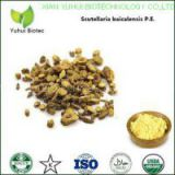 baicalin,baicalin 95%,baicalin extract,baicalin powder,baicalin extract powder