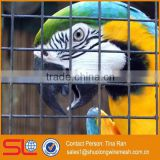 Hebei Shuolong supply 4ft. x 50ft. 14-Gauge green PVC coated welded steel wire mesh for parrots