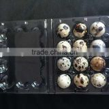 disposable Clamshell blister plastic quail eggs tray 6 holes slots                                                                         Quality Choice