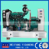 Yidaneng Power 10kw biogas generator genset with high quality
