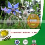 100% Natural & pure borage oil bulk with high quality, factory supply borage seed oil