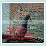 invisible agricultural bird netting / plastic bird wire mesh