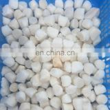 China Frozen Bay scallops meat with good quality