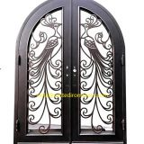 #002 Fashion Custom Wrought Iron Door