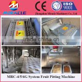 Fast Delivery Date Palm Core Seed Removing Machine From Fruit Process