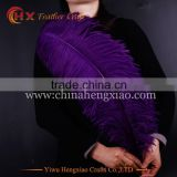 2016 china wholesale 26-28 inch colored ostrich feather for sale