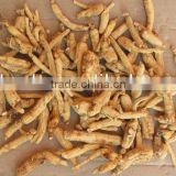 no SO2 dried white ginseng root