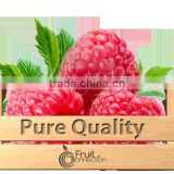 Raspberries puree quality Willamette