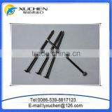 "3"" common nail beauty product iron nails from china factory"