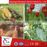 Animal Cages Stainless Steel Hexgonal Wire Mesh