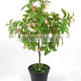 home decorative evergreen artificial small tree plastic potted tree cheap plastic tree for sale