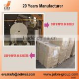China high smoothness 250gsm pe coated board with competitive price