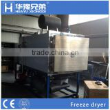 Milk freeze dryer lyophilizer