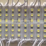 Factory price SMD led display module 5050 White 12V 6leds Blue Waterproof p10 led module