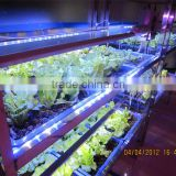 MarsHydro lighting fixtures Hottest 14W/28W/35W ISO9001/CE/ROHS/GS/BSCI waterproof led grow light bar