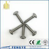 high quality Stainless Steel 316 Deck Screws