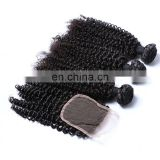 High quality afro kinky curly brazilian virgin hair bundles with lace closure