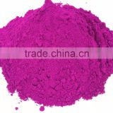 High Quality Vacuum Freeze Dried Red Dragon fruit powders from Thailand in Bulk packs