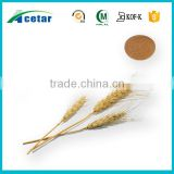 100% natural free sample product to test oat extract powder.