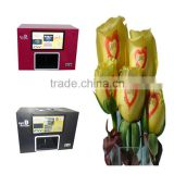 Flower Beauty Digital Nail Printer Machine For Salon Use