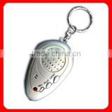 Digital Voice Recording Keychains with Torch Function