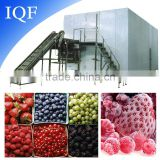 New Arrival High Quality Pineapple Iqf Freezer preservation equipment