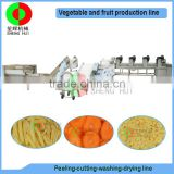 Factory offer air bubble ozone fruit and vegetable peeling cutting washing drying automatic machine production processing line