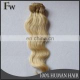 Wholesale 100% virgin remy clip in hair extensions for white women