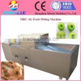Smoked Plum core removing and seed pitting machine price