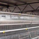 high quality commercial chicken house