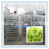 Lyine Heat Pump Dehydrator/Dryer/Drying Machine for Fruit Raisin