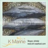 China Big Size Frozen Yellowfin Tuna lot number#kmw4005