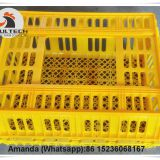 Indonesian Hot Sale Cheap Price Chicken Transport Coop & Transport Crate/Box for Hatching Eggs & Plastic Transport Cage for Live Chicken for Wholesale & Plastic Carriage Cage