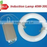 150W Induction Lamp Induction Lighting Electrodeless Induction Lamp Ballast 5 Years Warranty