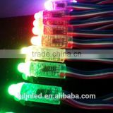 12mm Pixel LED 20pcs/string - WS2801/UCS1903