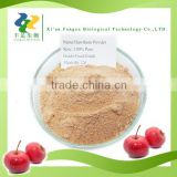 Hot Summer Drink Hawthorn Berry Extract powder for drink,Fruits powder