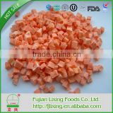 Freeze-dried carrot dice used in instant foods or restaurant