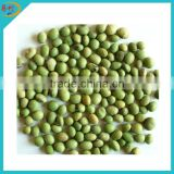 IQF frozen green peas from manufacturer