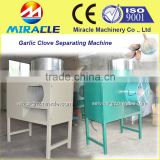 Garlic farm necessary machine of stainless steel garlic separating clove machine to increase fresh garlic price