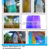 UV Stabilized Plastic Banana Bunch cover bags