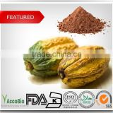 Natural Cocoa extract/Pure Cocoa powder/Cocoa bean extract 10% 20% Theobromine