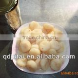 567g Canned Water Chestnut in tin