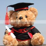 graduation gown for bear