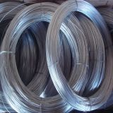 Factory-Galvanized wire/Galvanized iron wire/Binding wire/0.13mm to 4.0mm,0.2kg to 200kg/roll 500kg/roll