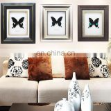 Nature real butterfly frame home decoration craft