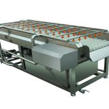 Fruit vegetable washer machine price for tomato