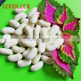 New Crop Dry White Kidney Beans For Sale