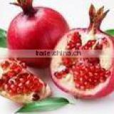 pomegranate bark extract powder,Ellagic acid 40% 90%, pomegranate peel extract