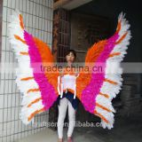 butterfly shaped wings made of real feather                                                                         Quality Choice